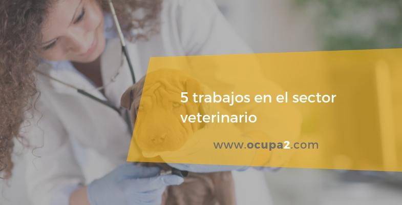 5 trabajos en el sector veterinario