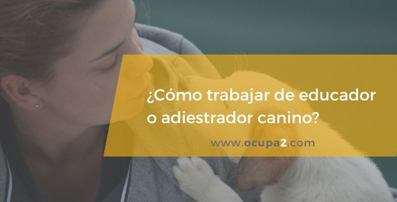 adiestrador canino, educador canino, entrenador, etólogo.